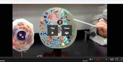 Smart Video Animal Cell Lesson - Featured Image